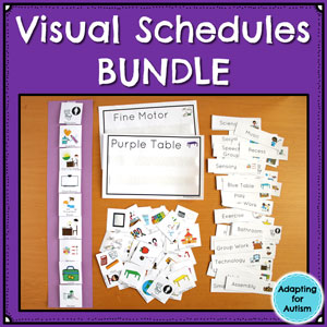 Daily Visual Schedules for Autism and Special Education Classrooms