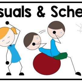 PE visuals and schedule for special education | Adapting for Autism