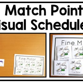 Visual schedules for autism and special education classrooms are best practice. Use match points to make following the schedule a concrete task.